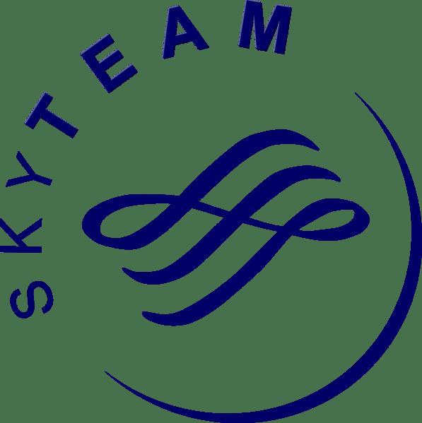 Skyteam logo BIG