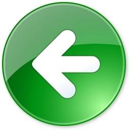 previous icon arrow